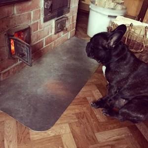 Собака возле русской печи