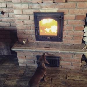 Каминная печь и собака