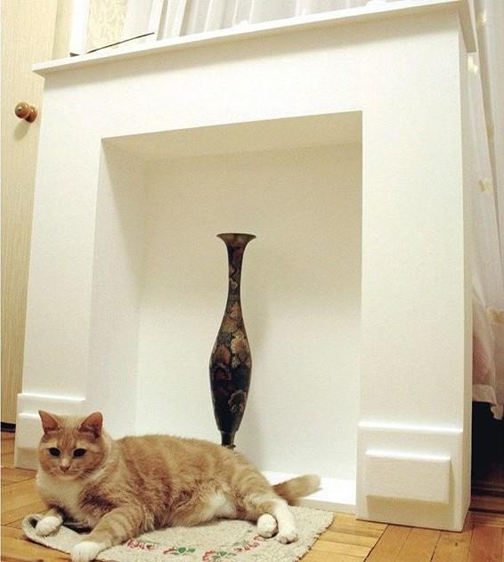 Портал для камина и кот